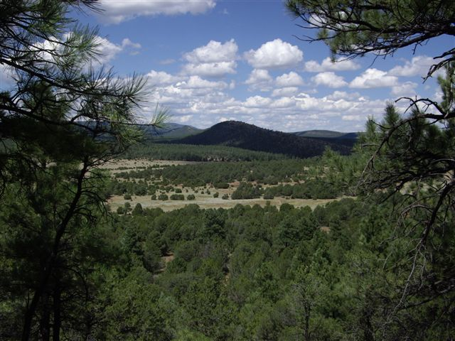 Ortiz Mountain Ranch   Sale Price: Undisclosed Location: Madrid, New Mexico Size: +/- 11,300 Acres