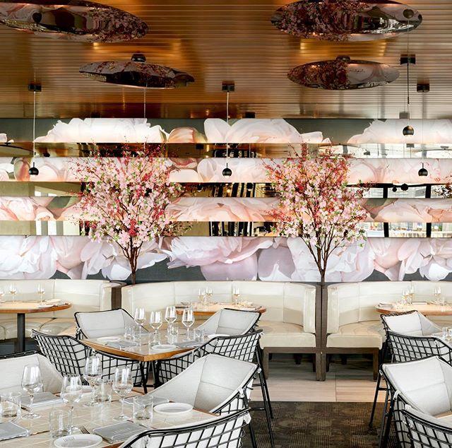 Feeling the cherry blossom at Lavelle Toronto.  #ICRAVEdesigned #interiordesign #hospitaltiydesign #diningexperience  #torontofood