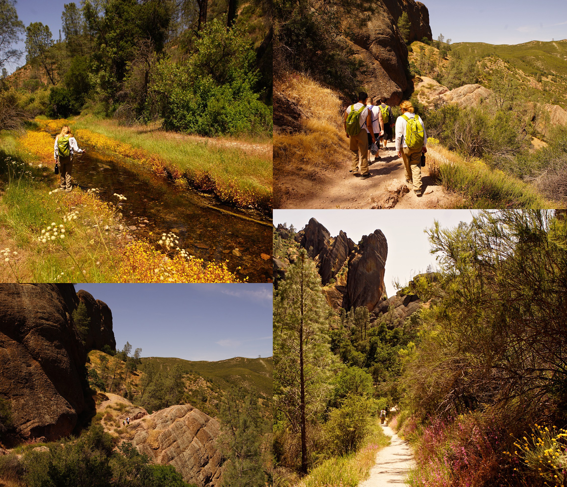 May 7th Ron and board member Steve Shackleton ventured down to Pinnacles National Park for a day trip with youth from San Benito Probation.