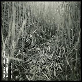 Charlie Cunningham  - Permanent Way -Mixing [BMG] -  Listen