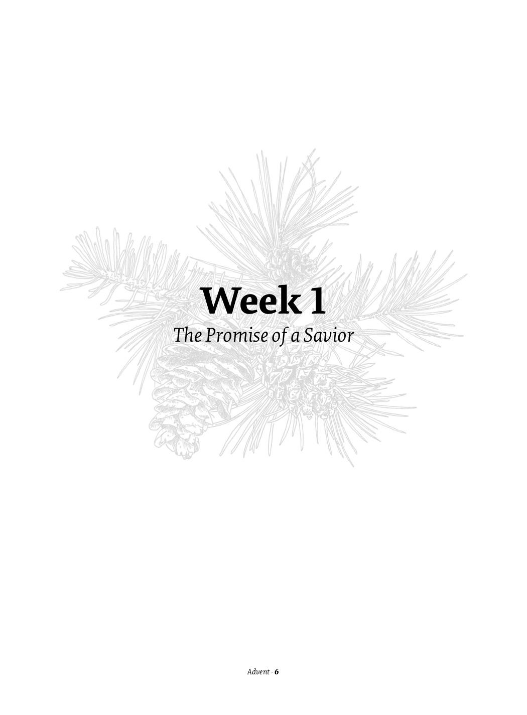 Week One 1.jpg
