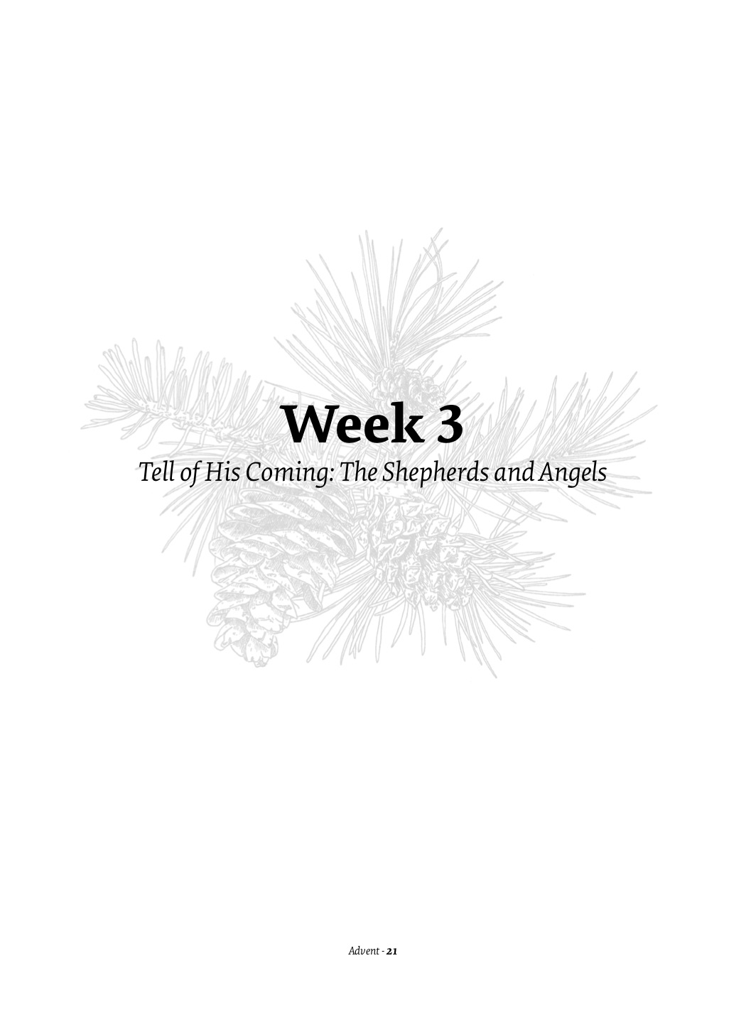 Week Three 1.jpg