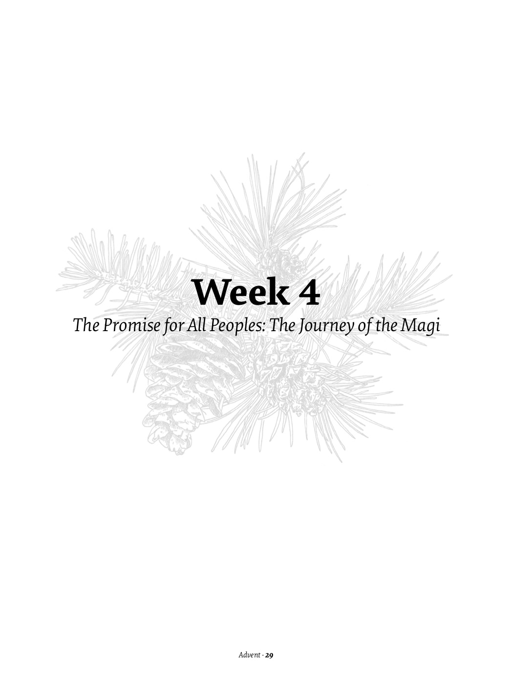 Week Four 1.jpg