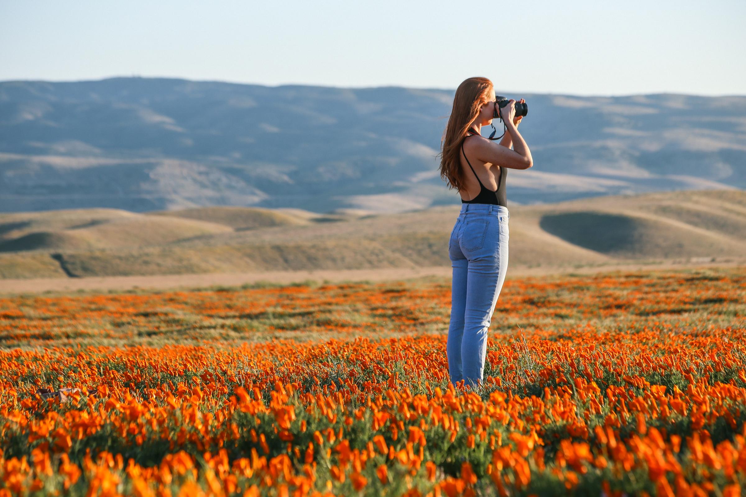 Poppies-4635.jpg
