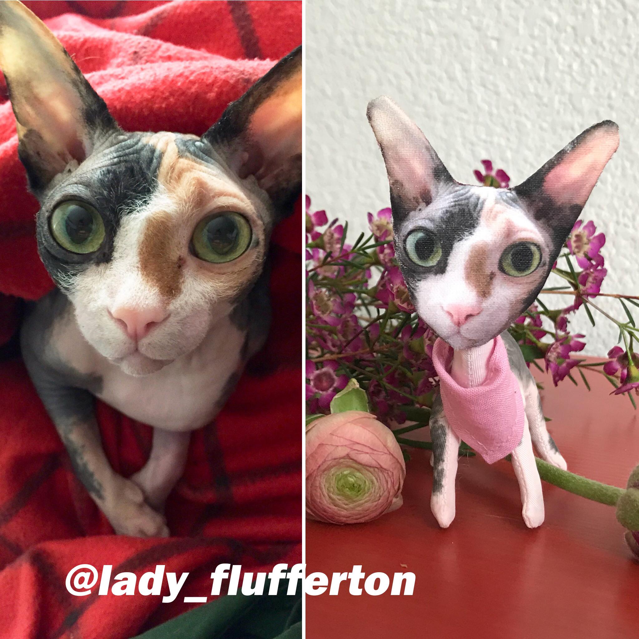 ladyflufferton.jpg