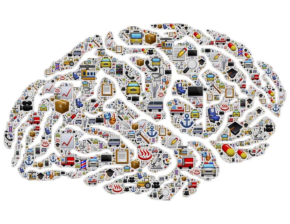 brain-954823_960_720.jpg
