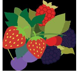 forrest fruits.png