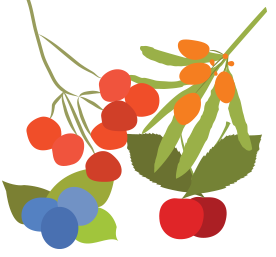 wild berries.png
