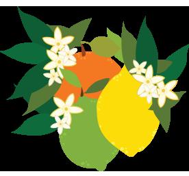 citrus .png
