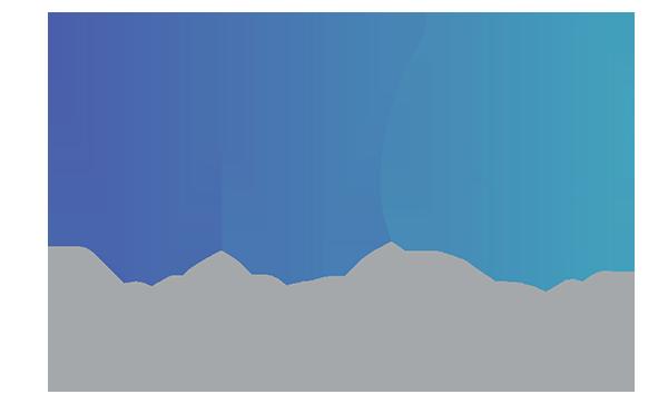 ZarihsWeTransfer.png
