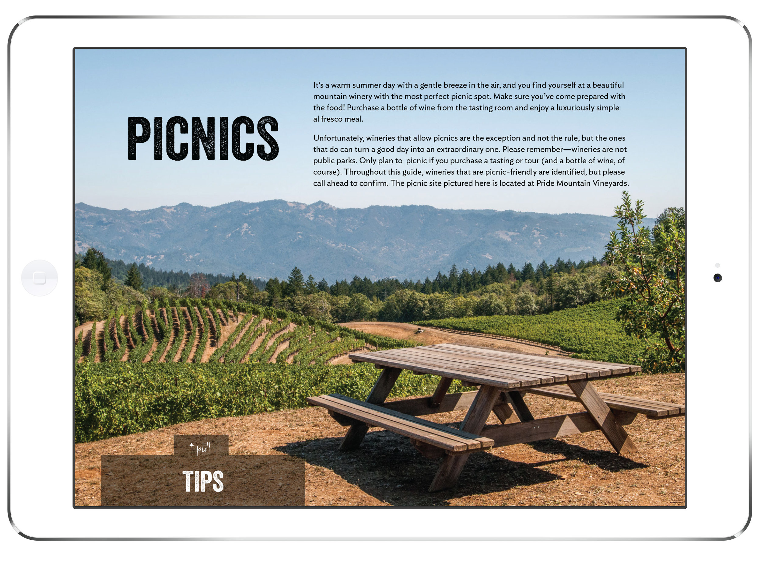 picnics.jpg