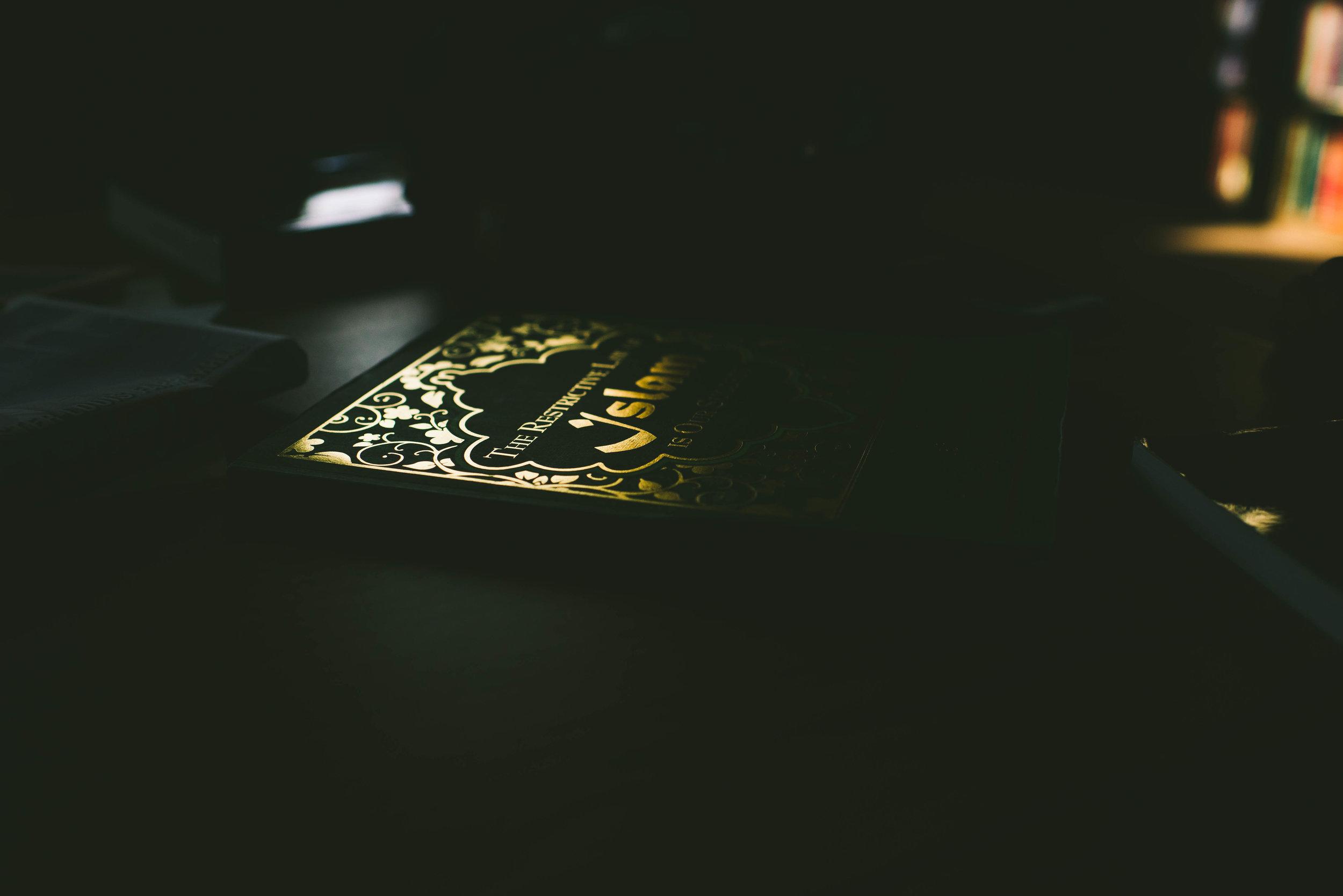 Milhouse__008.JPG