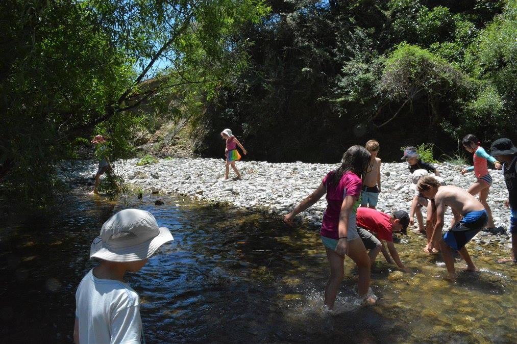 whakapuaka river swim