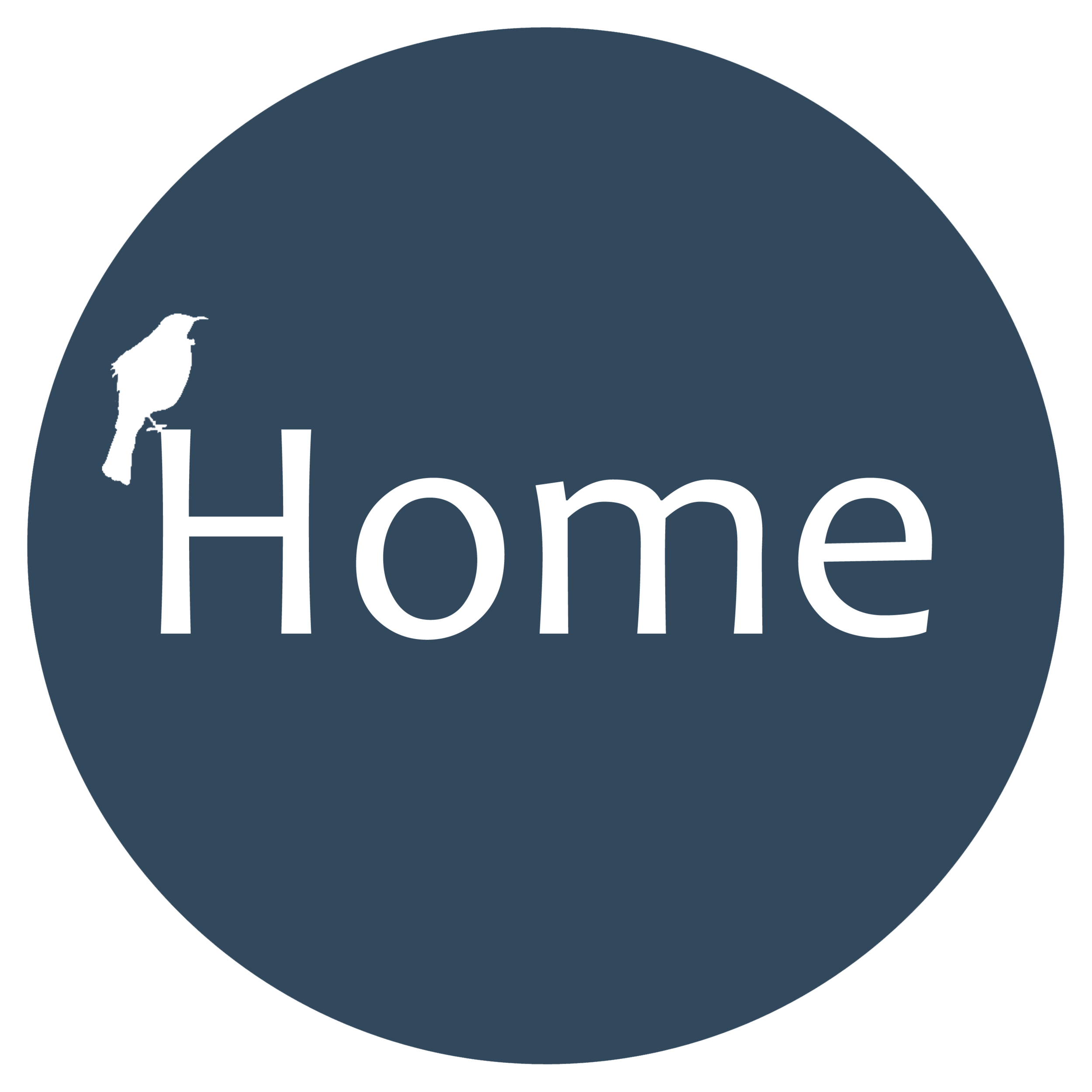 2nd Nav Home Button