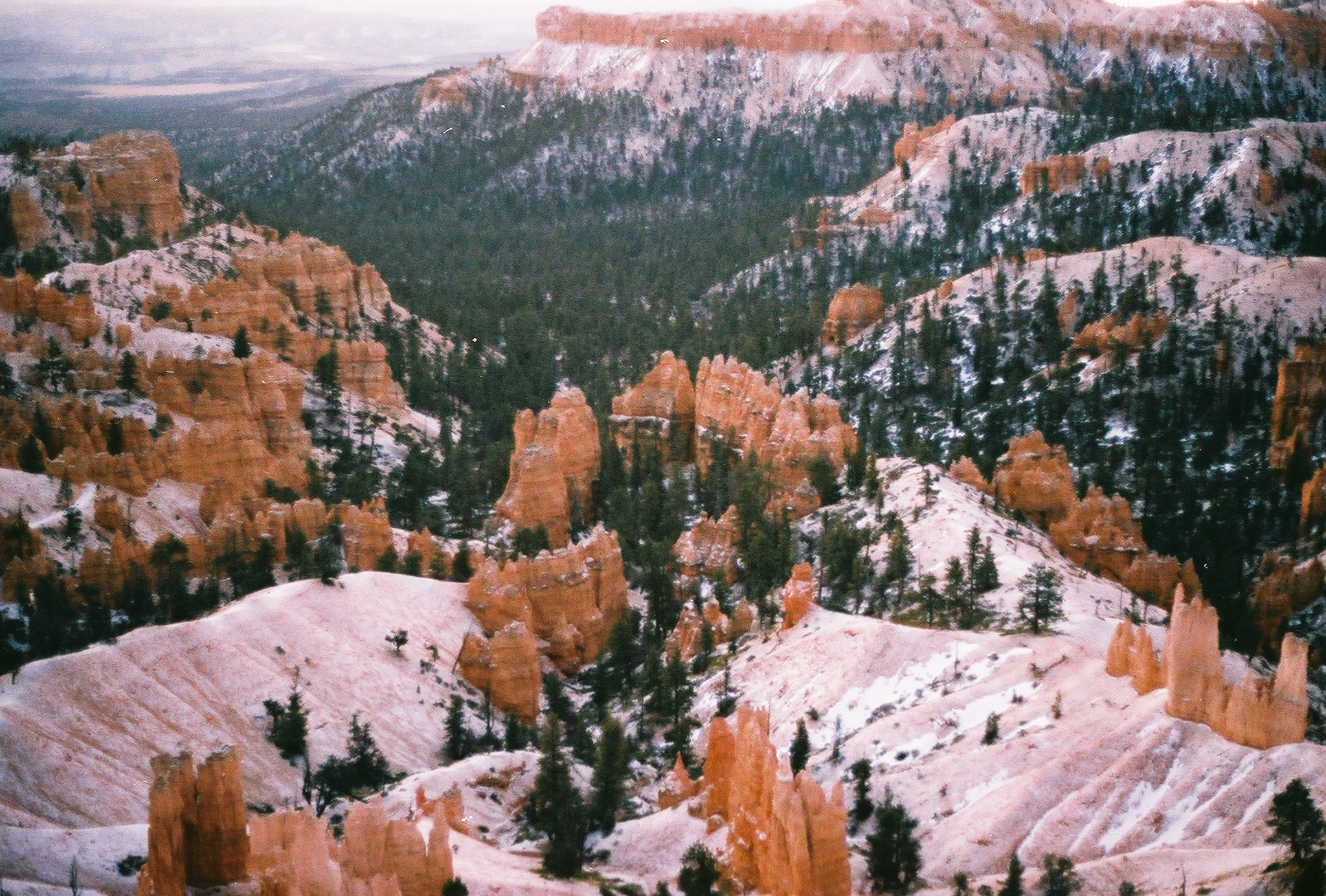 bryce canyon national park on fujifilm 400.