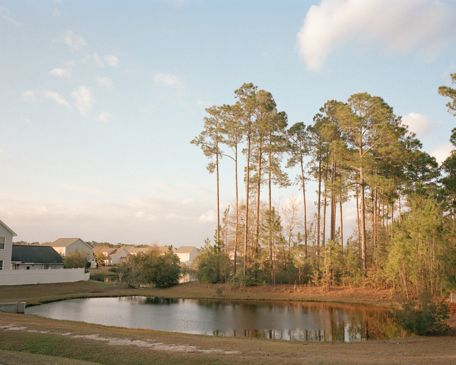 Untitled (Suburban Pond)