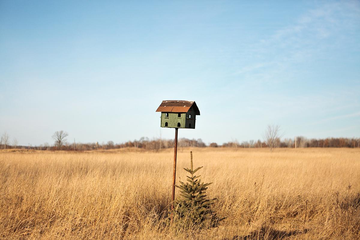 Birdhouse , 2011