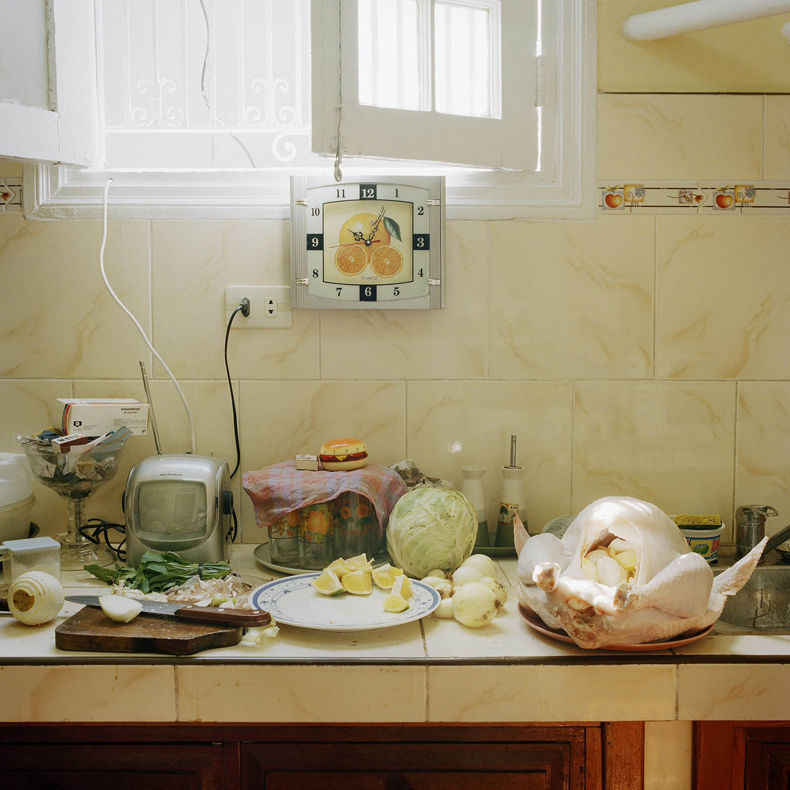 American Thanksgiving  © Meg Griffiths