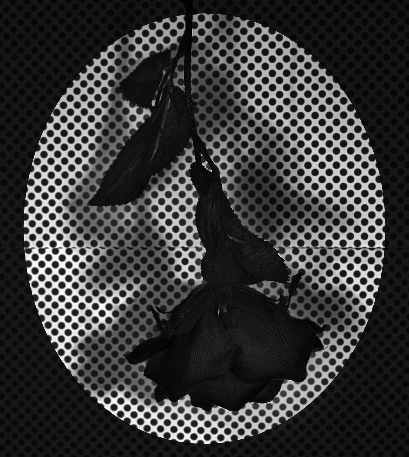 Fake Flower Study No. 3 , 20 x 24 inches (framed), Archival Inkjet print, 2018, $500 © Ashley Whitt