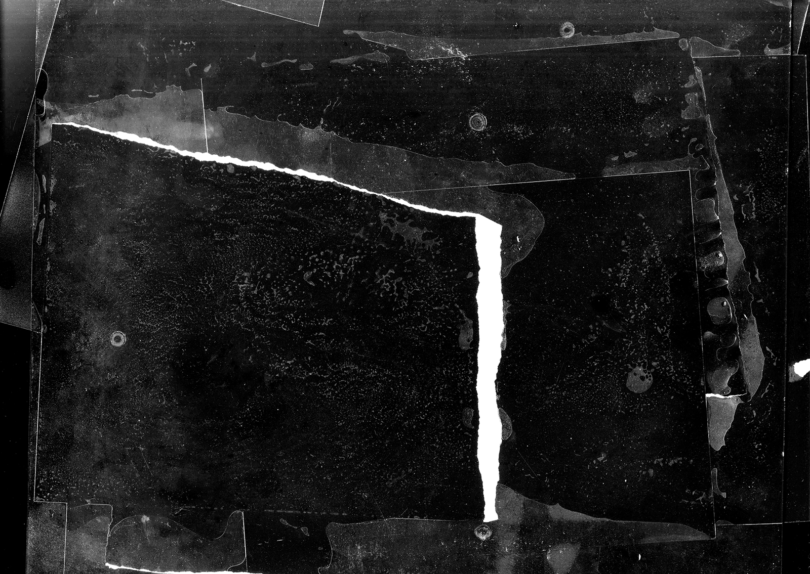 Maximum property print test (final wash), flatbed photogram ,  Digital file,  12 x 17 inches  Year: 2018