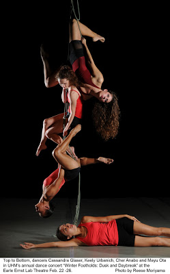 Cassandra Estelle aerial choreographer honolulu.jpg