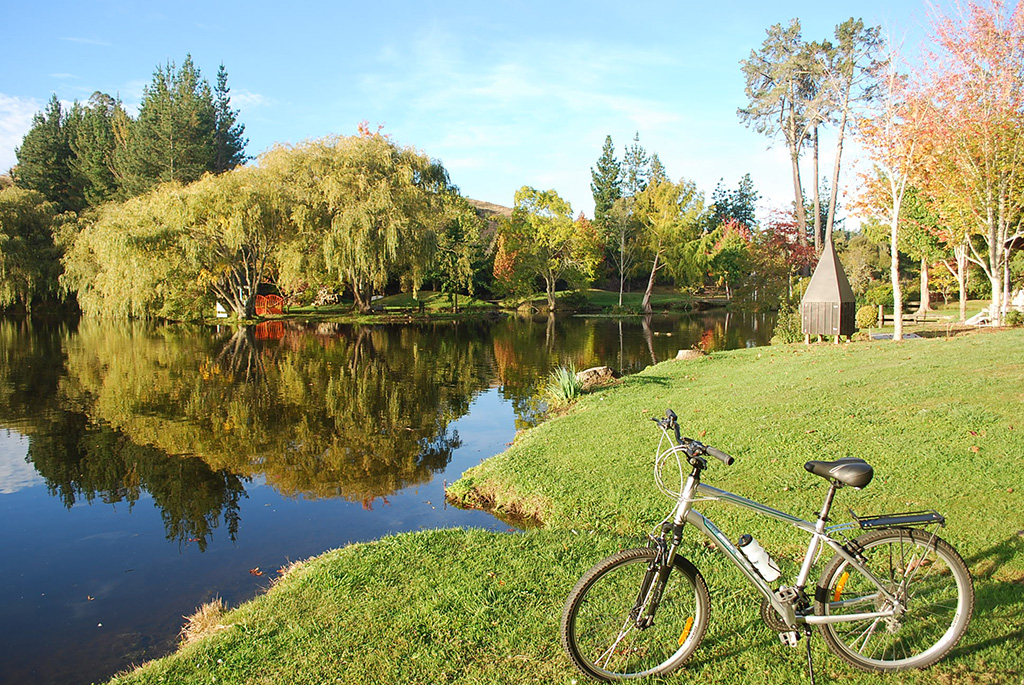 Hidden Gems along The Cycle Trail