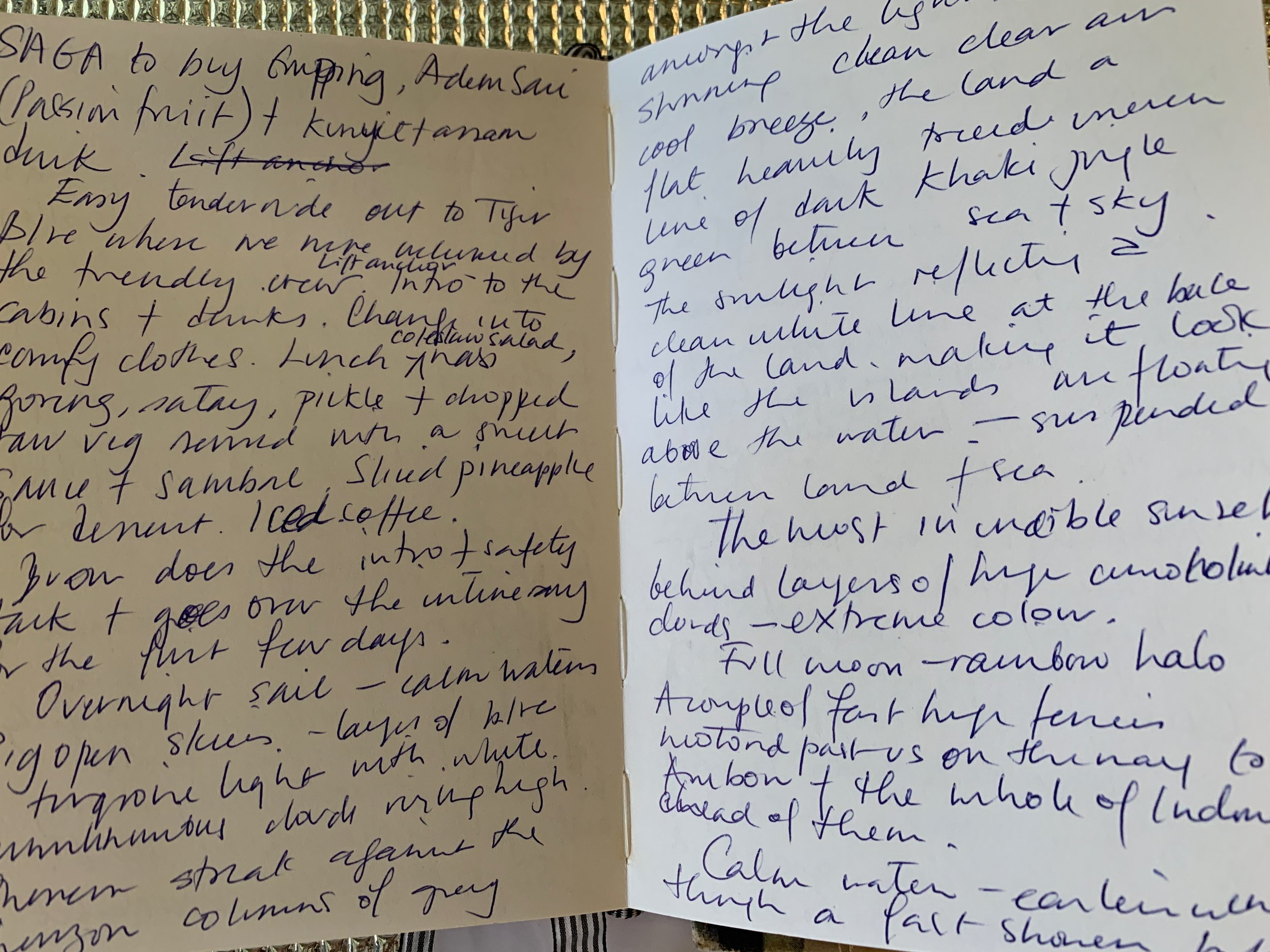 Turn your travel notes into a magazine article or a super travel blog.