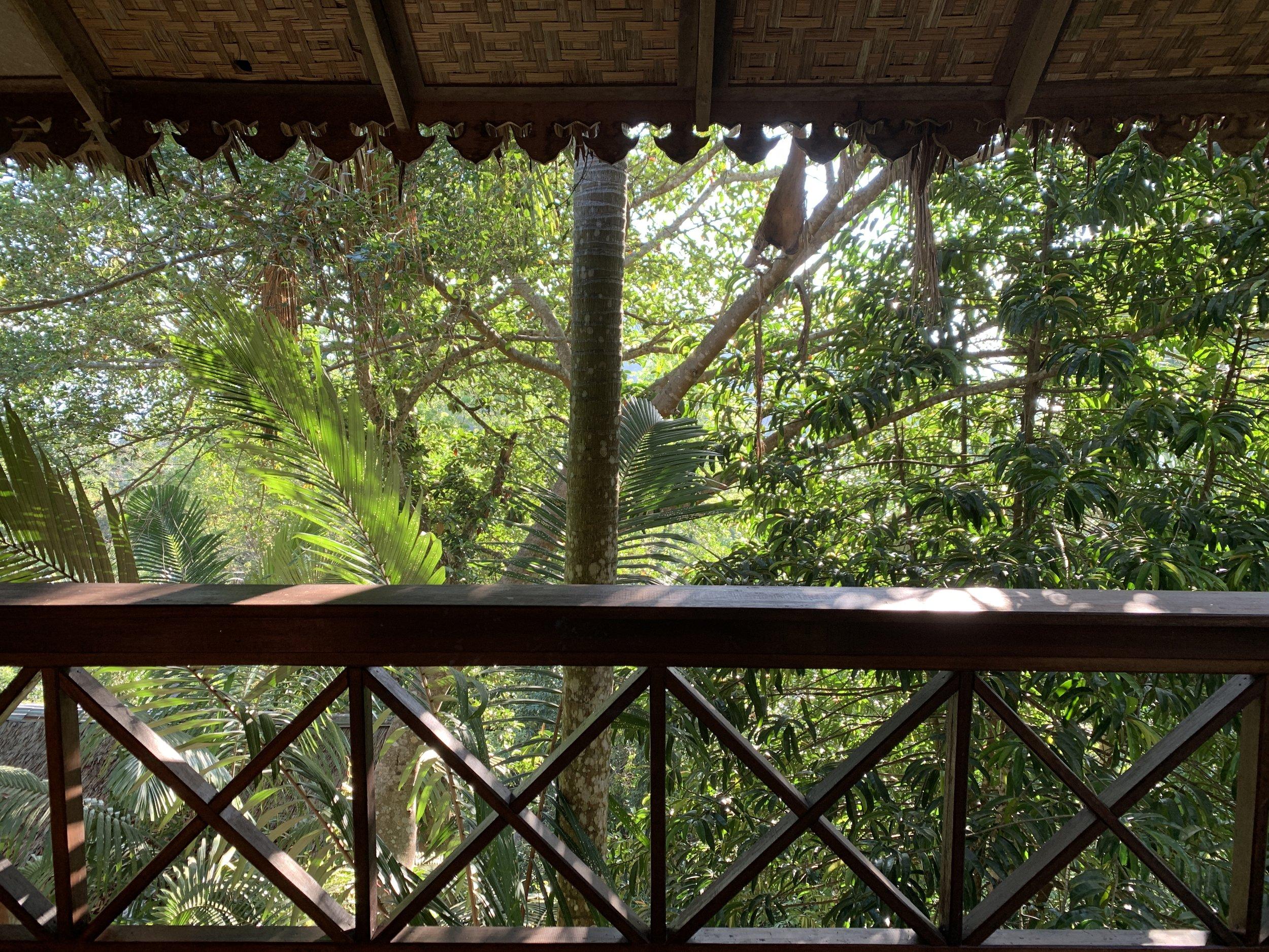 Tiger Rock. Veranda. master bedroom, Main House. Jungle tree house.