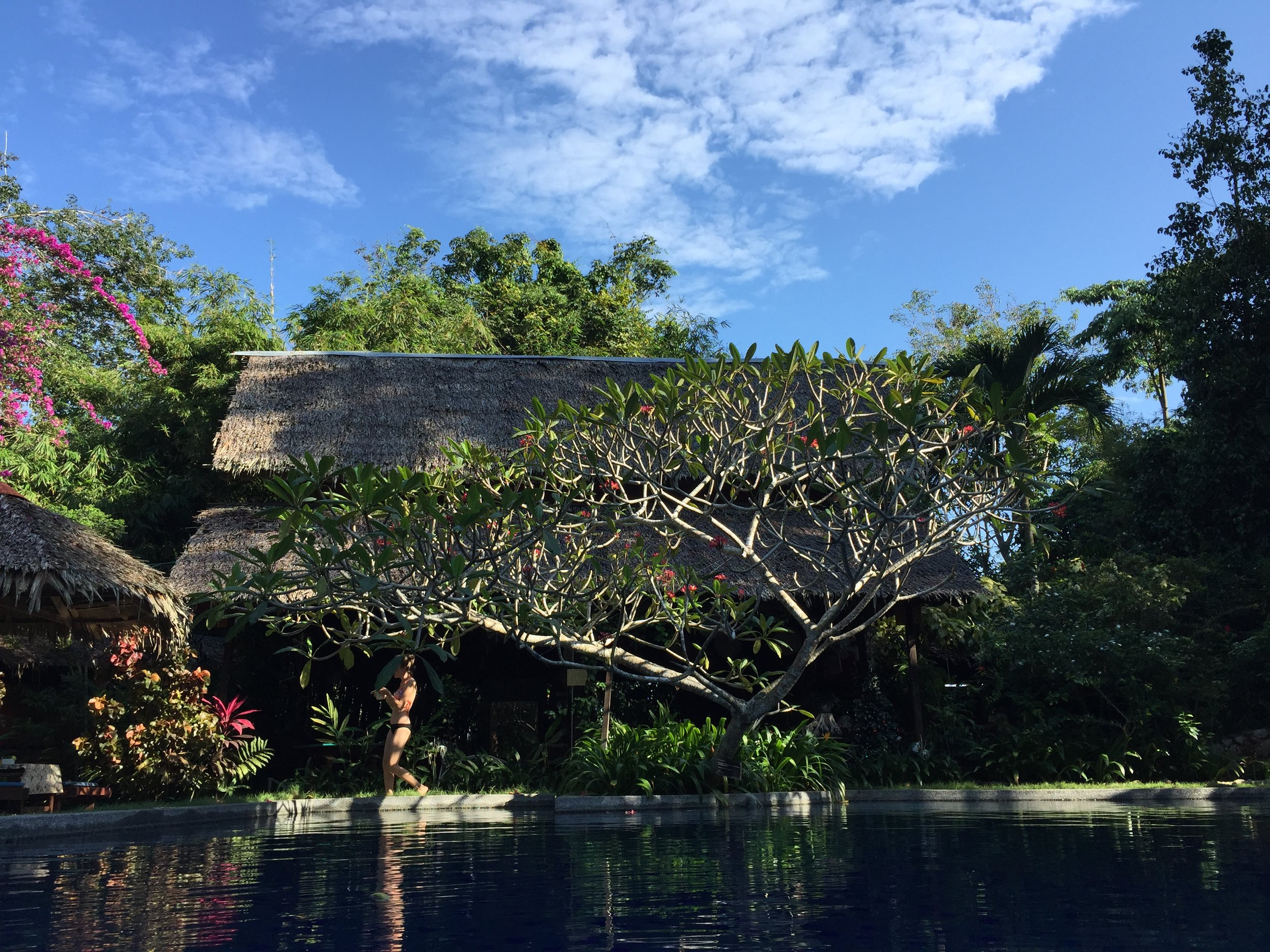 Blue sky means relaxing poolside at Tiger Rock