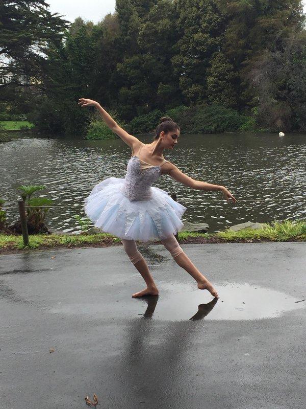 Amrita swan.jpg
