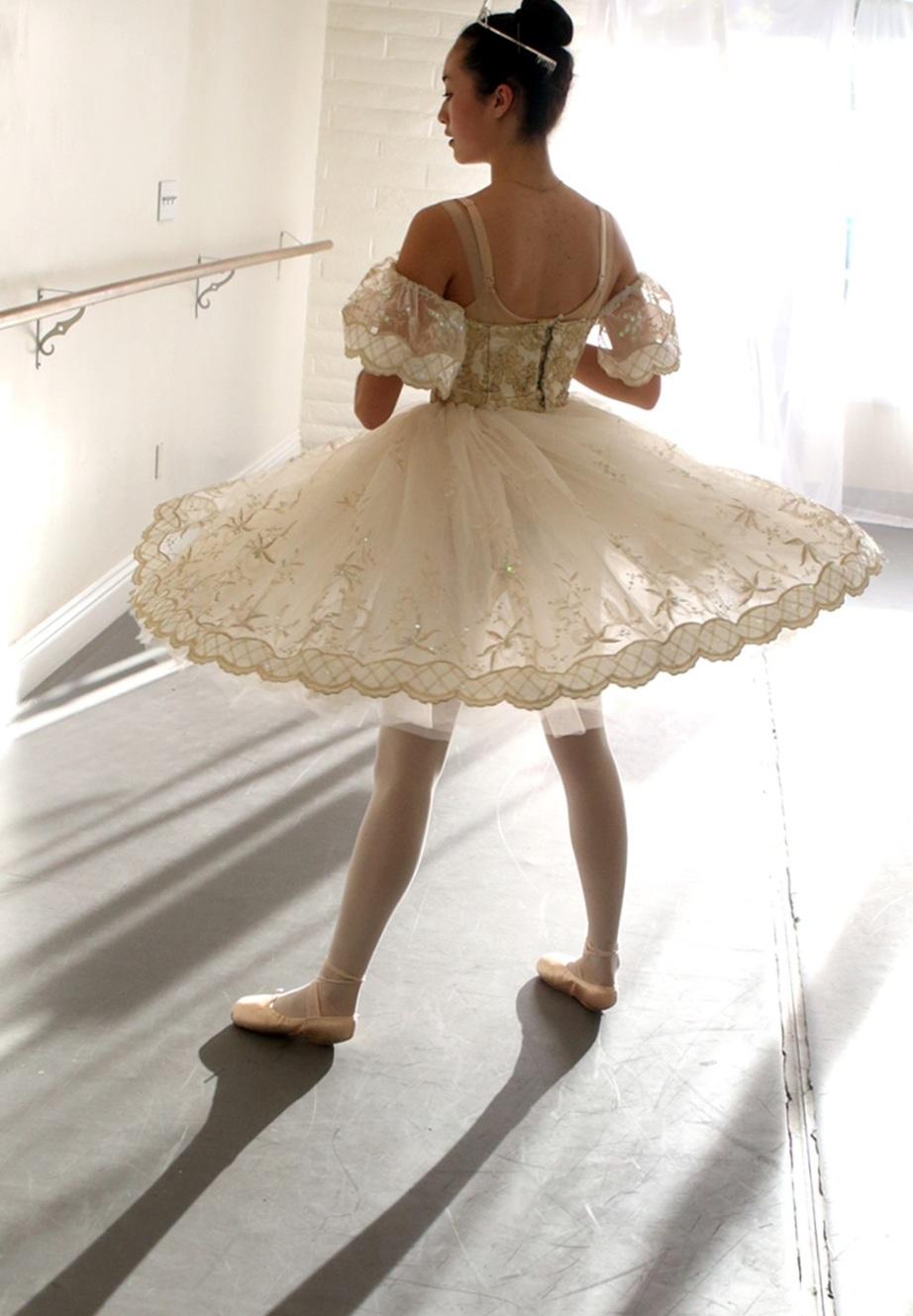 Cinderella+Skirt.jpg
