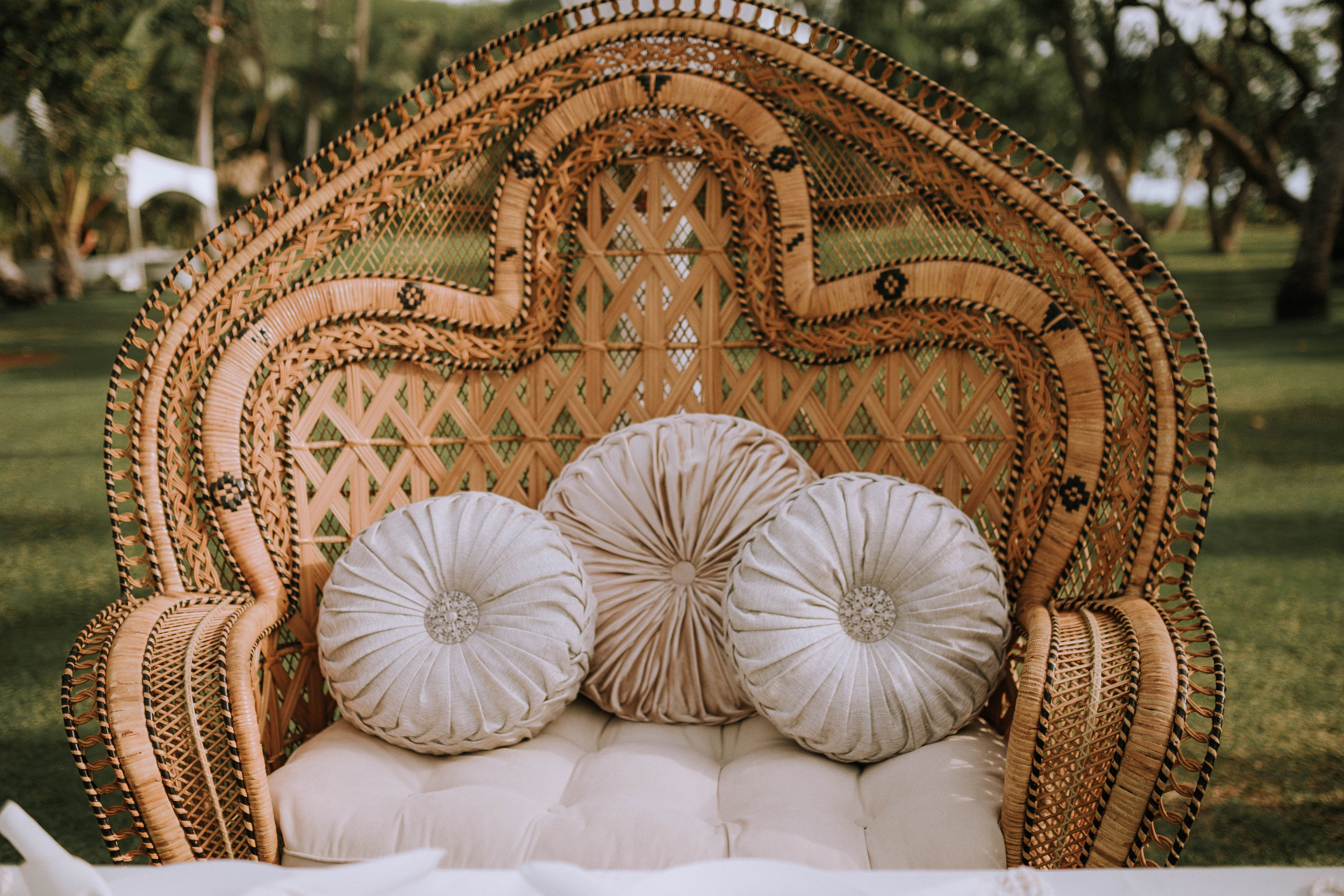 Golden Double Peacock Chair(Wicker/Loveseat)