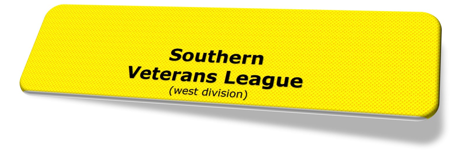 S Vets League Logo.jpg