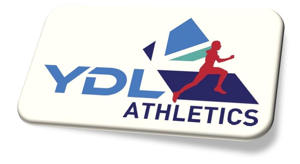YDL Logo.JPG