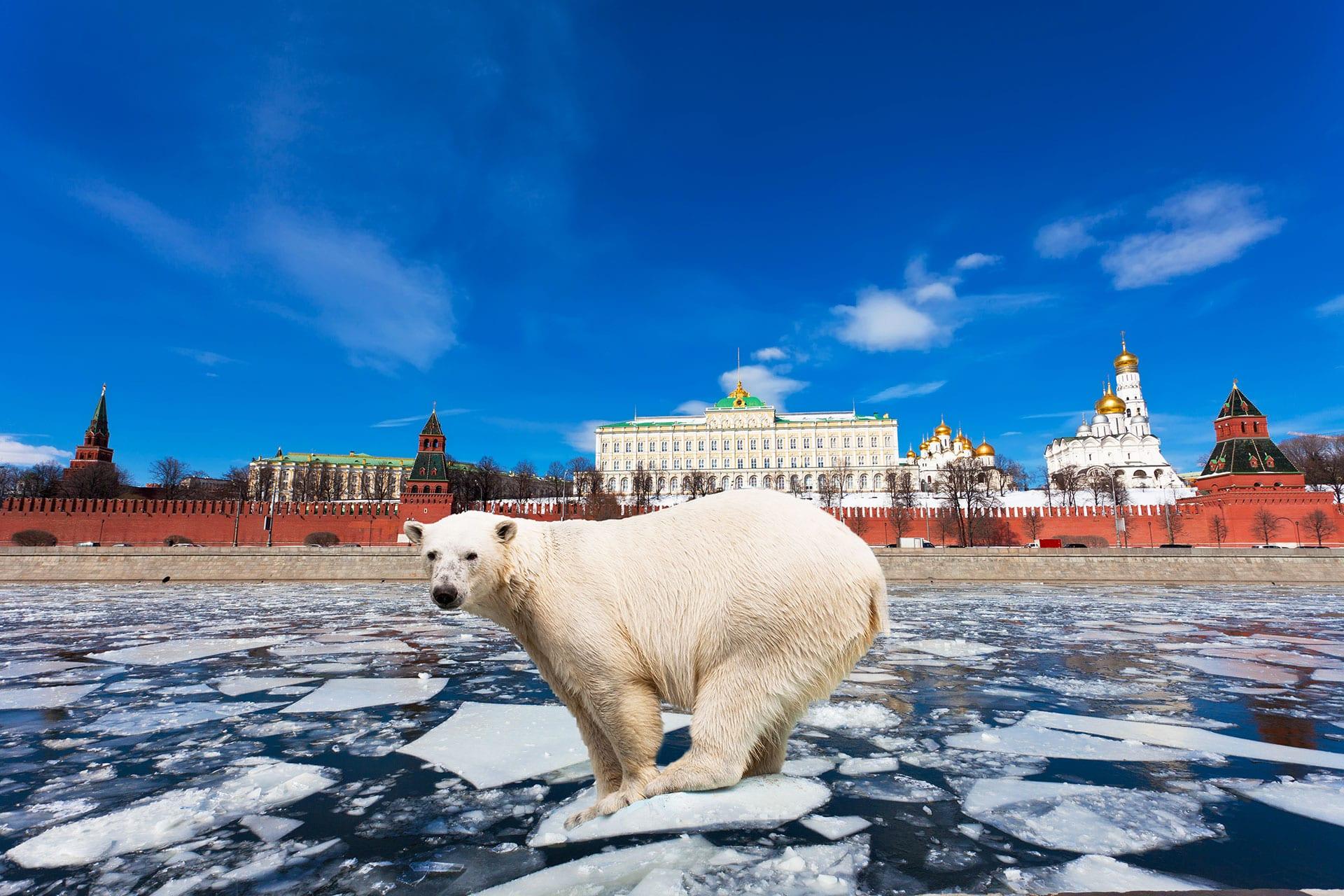 venäjän opiskelu on haastavaa mutta hauskaa -