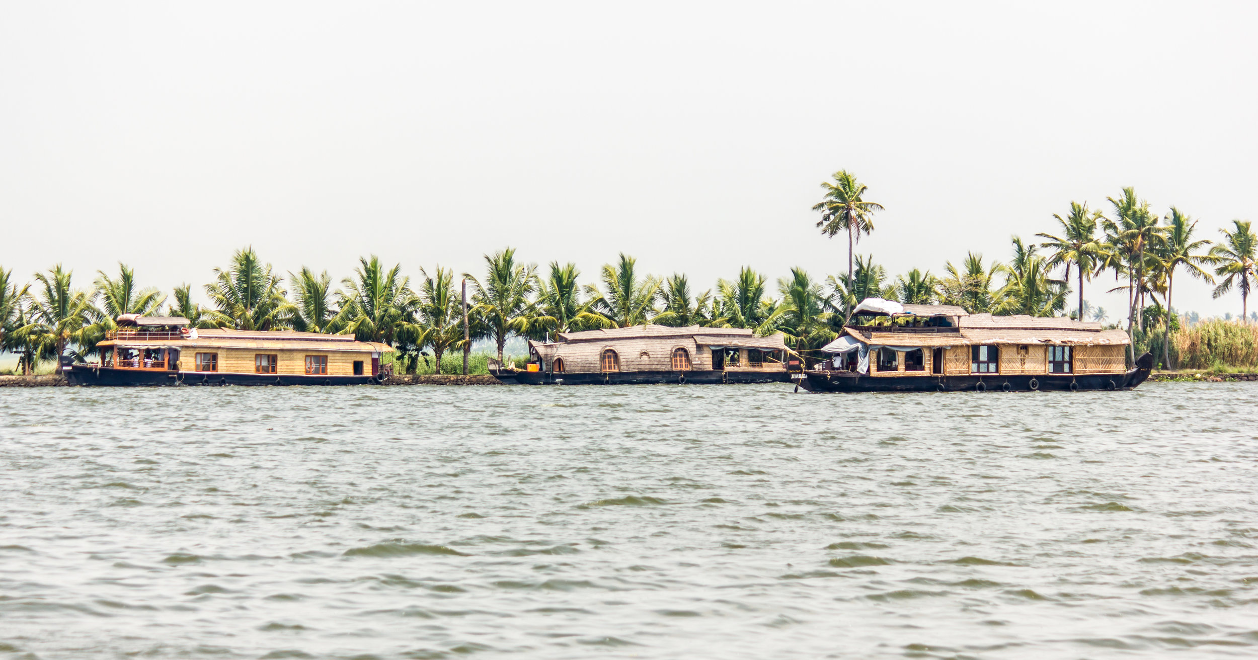 Serene Kerala 8.jpg
