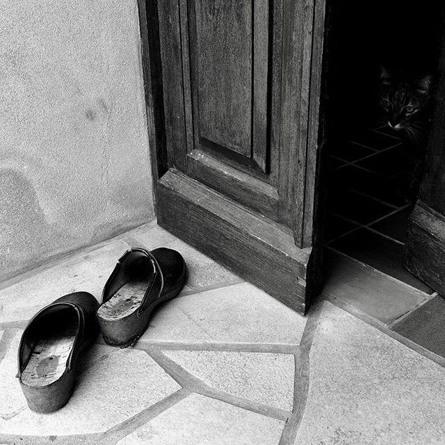 Welcome home . . . #france #bretagne #breitz #shoes #entrance #photographer #opendoor #door #woodendoor #hinddencat #cat #meow #notallowedtogooutside #catoftheday #catofinstagram #blackandwhitephotography #blackandwhite #marine #holidays #notasunnyday #cloudy #windy #intheshadows #summer #holidays #dxo #dxoone #shotwithdxoone