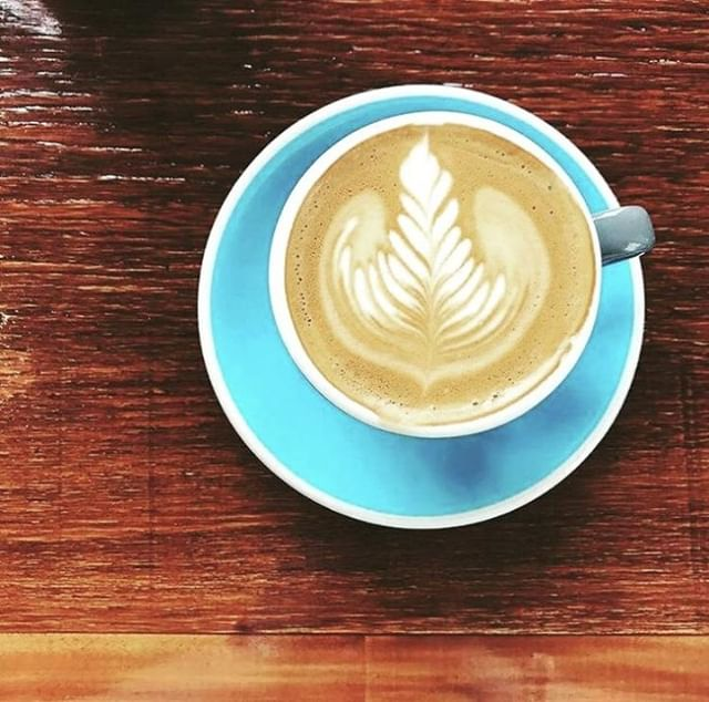 Look out, everyone... Our friends at @kettleandtin have done it again! Check out this seriously beautiful brew 😍 Head on in if you're ever in the Paddington area - we've heard some pretty good things 😉For all wholesale enquiries email: TRENT@BEARBONES.COM.AU #SpecialtyCoffee #CoffeeRoasters #KettleAndTin ↓ ↓ ↓ #specialtycoffee #coffee #specialtycoffee #latteart #patiodried  #coffeetime #brisbaneanyday #fortitudevalley #probat #roasting #compakgrinders #brisbanefoodie #brisbanecoffee #greenbeans #blend #singleorigins #brisbanecoffeescene #goldcoastcoffee  #coffeeaustralia #newzealandcoffee #baristalife #baristadaily #barista #coffeegram #instacoffee #coffeeart #coffeelife