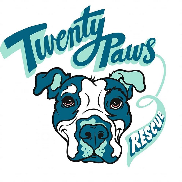Twenty Paws Rescue    Twenty Paws Rescue  is a 501c3 rescue organization that works to help abused and abandoned dogs and cats in RI, MA, CT, NY, NJ, and PA to find their furever homes. We partnered with Twenty Paws during our 2019 run of  Legally Blonde  and were thrilled to raise over $500 to help our furry friends! Check them out on Facebook and Instagram (especially if you like pictures of adorable animals) and consider donating to their cause today!