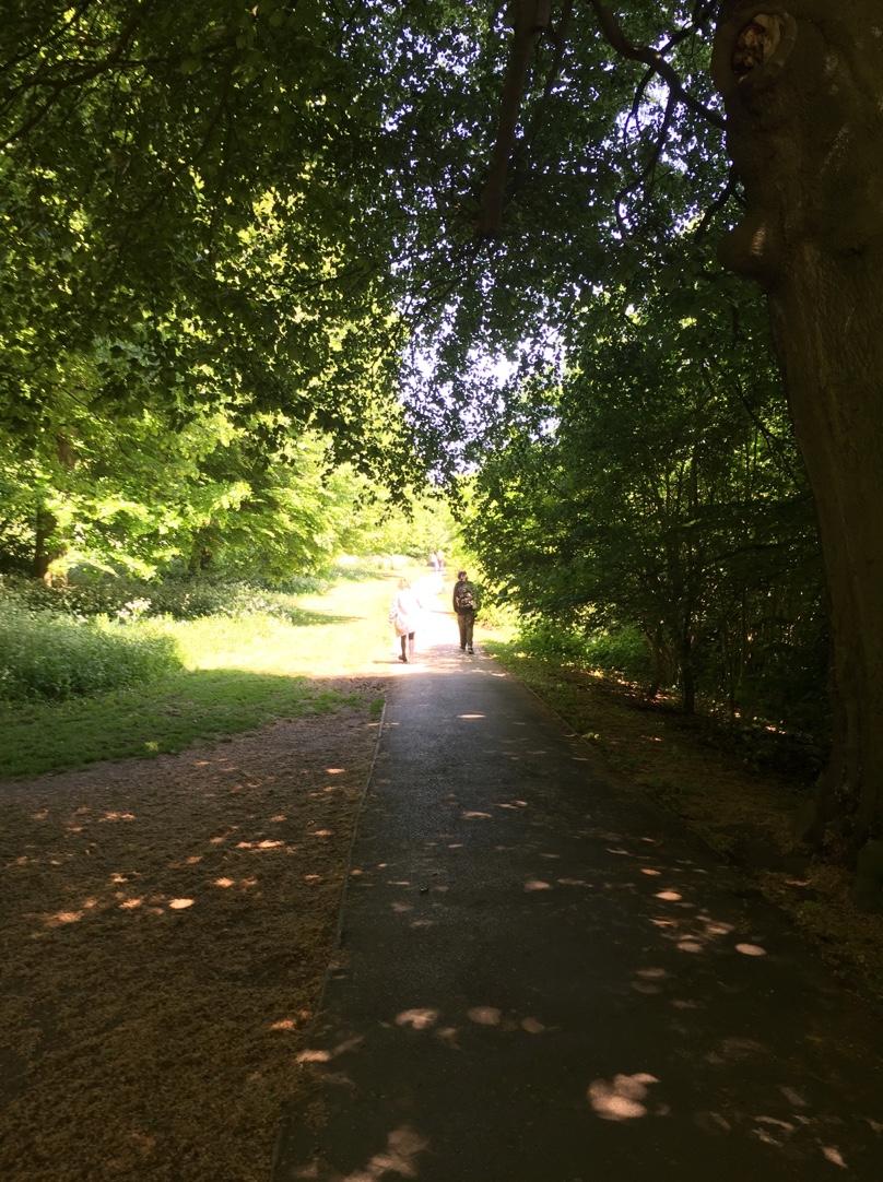 Walking through Farnham Park
