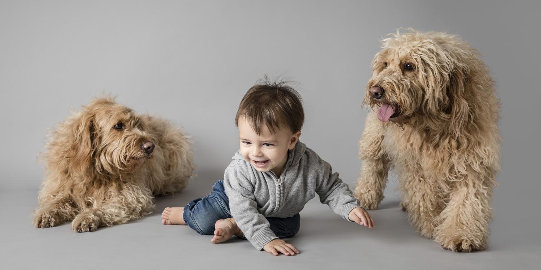 BabyPhotographybanner-5.jpg