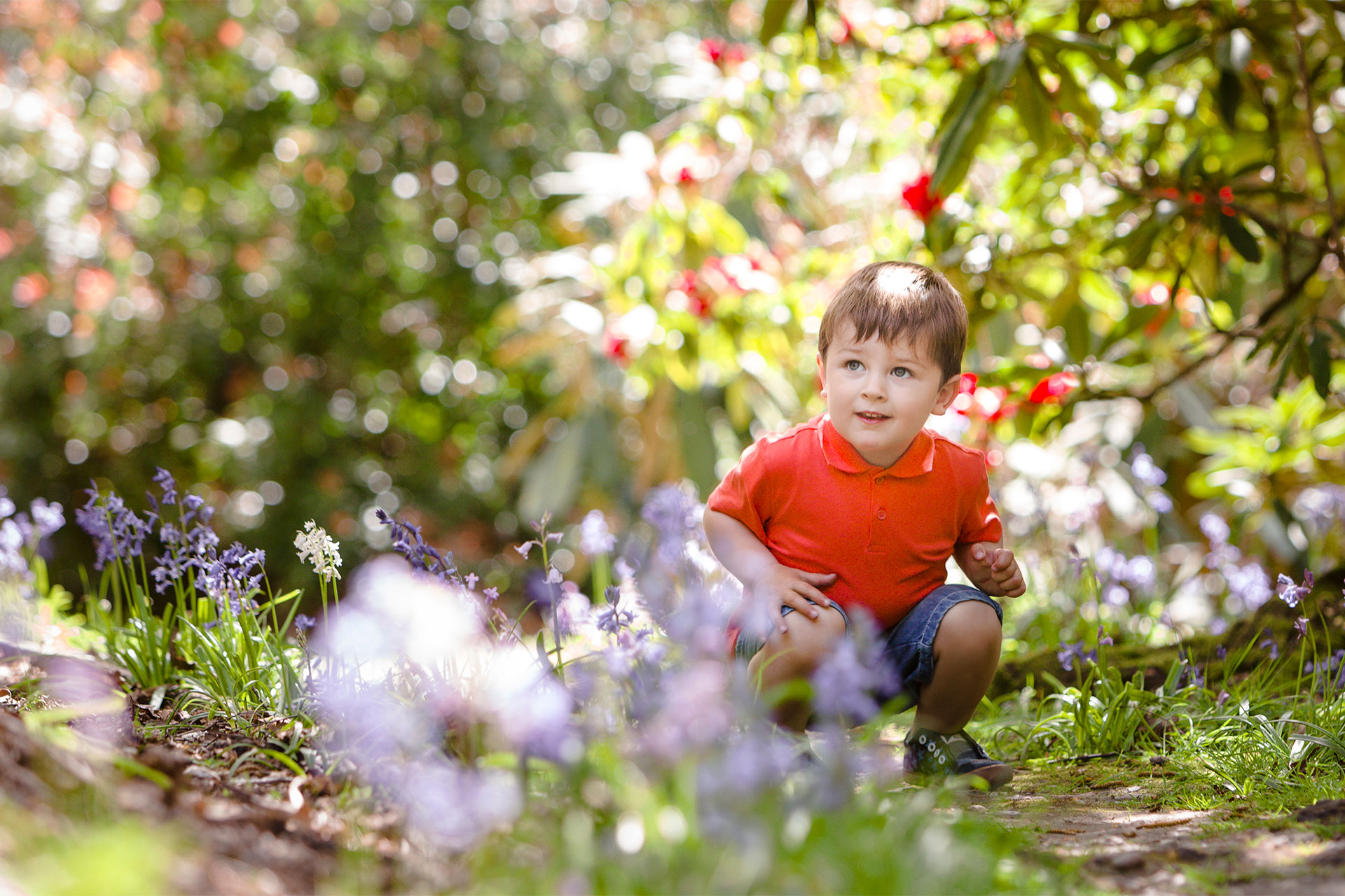 springflowersphotographer04.jpg