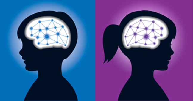 Are Gendered Brains Real? -