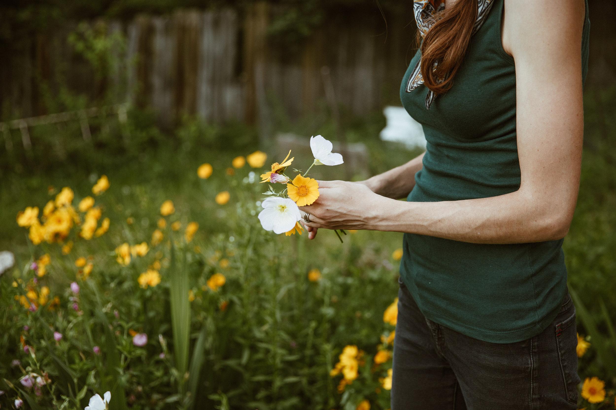 Danielle Shields Photography