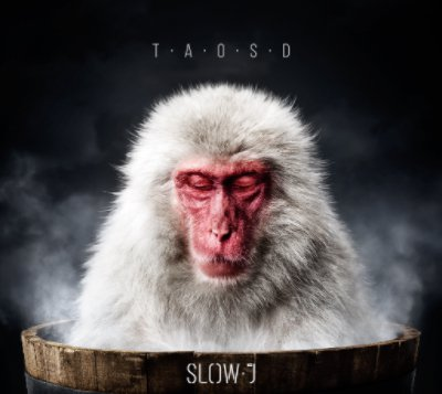 Slow J - The Art Of Slowing Down