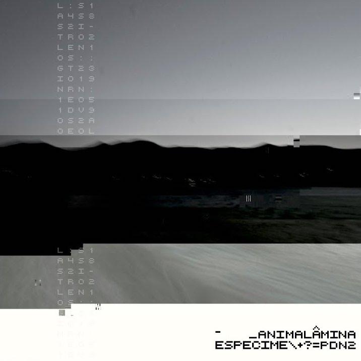 013-ANIMALÂMINA - ESPÉCIME PDN2