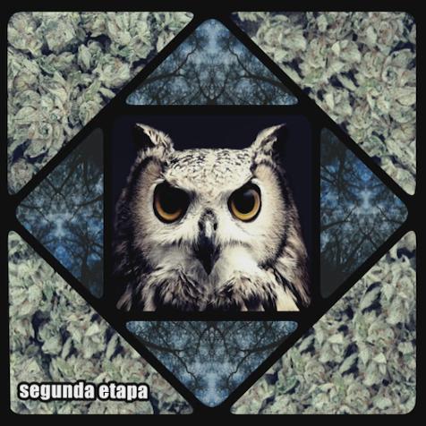10. Zeca (na faixa) - mixtape Segunda Etapa