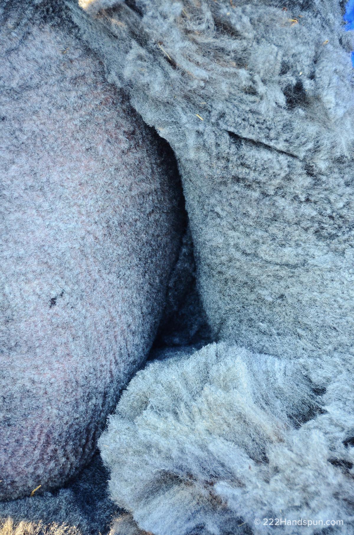 Fleece Coming Off Closeup