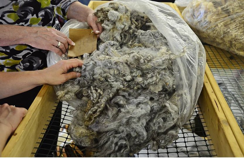 fleece sales