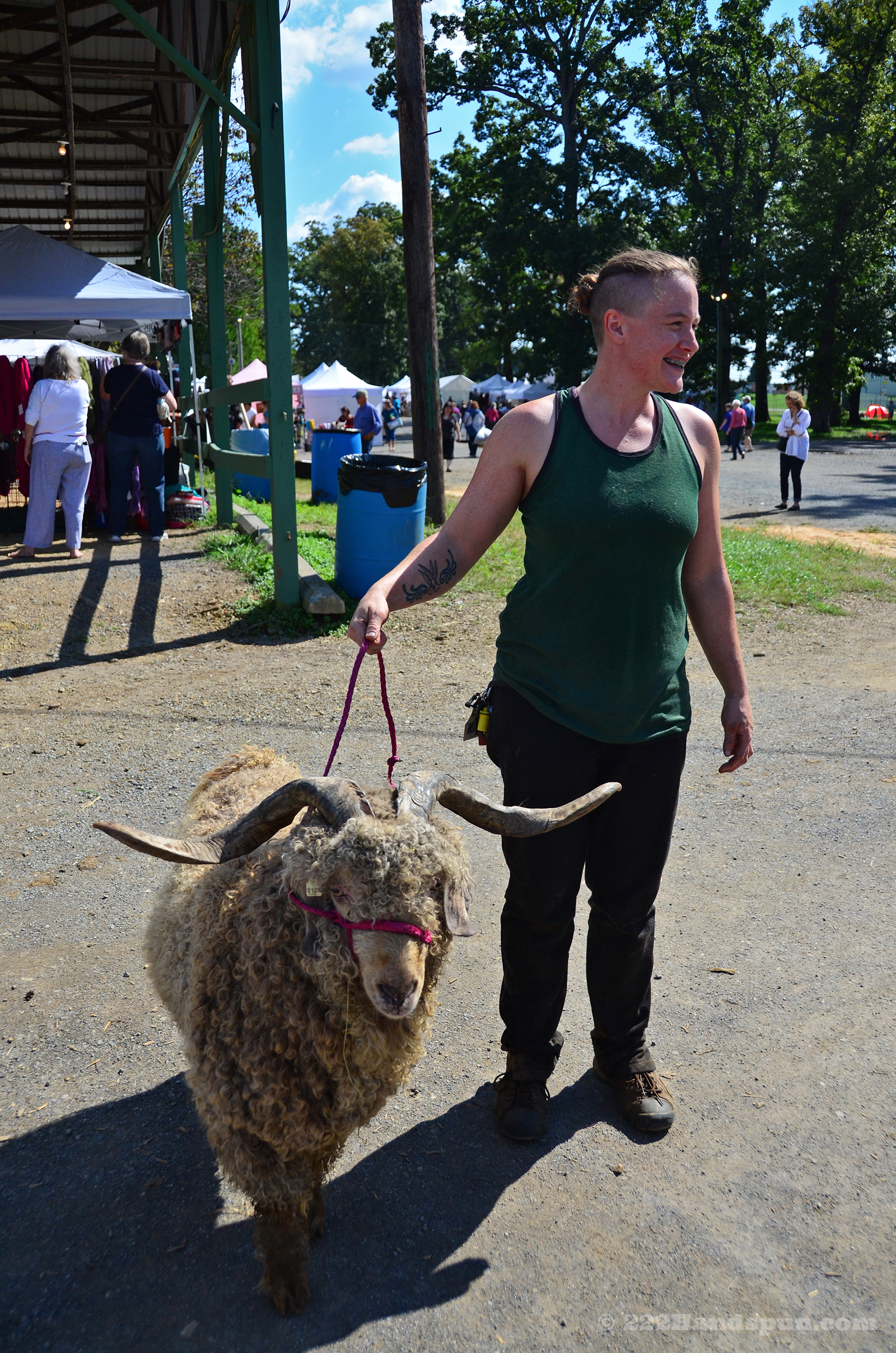 Emily Getting Ready to Shear an Angora Goat